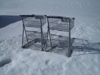 Supermarket carts in snow